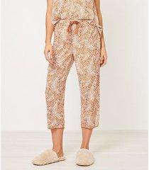 loft animal spotted pajama pants