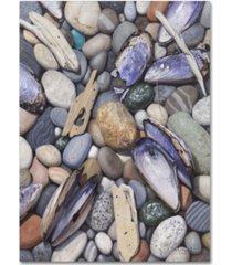 "stephen stavast 'treasure at muscle beach' canvas art - 47"" x 35"" x 2"""