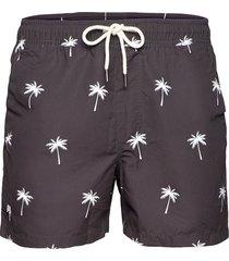 black palm swim shorts badshorts brun oas