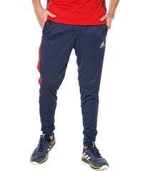 pantalón azul-rojo adidas performance tan club h