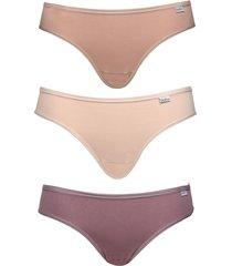 kit 3pçs calcinhas del rio biquíni mousse bege/roxa