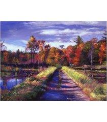 "david lloyd glover lakeside walk canvas art - 20"" x 25"""
