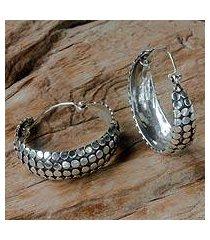 sterling silver hoop earrings, 'festive harvest' (indonesia)