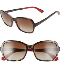 women's kate spade new york annjanette 55mm polarized sunglasses - havana pink/ brown grad polar