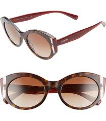 women's valentino 53mm cat eye sunglasses - havana/ burgundy/ brown