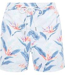 short masculino praia strelitzia - azul