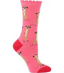 calcetín algodón st meerkat rosa mujer hush puppies
