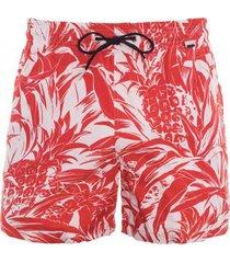 hom nicaragua beach boxer rood