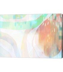 """metaverse cape apricots by delores naskrent canvas art, 27.5"""" x 20"""""""