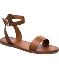 campodoro shoes summer shoes flat sandals brun aldo