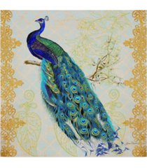 "jean plout 'beautiful peacock' canvas art - 14"" x 14"""