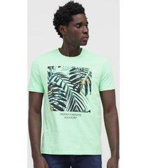 camiseta aleatory folhagem verde - verde - masculino - algodã£o - dafiti