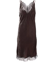 gold hawk lacey velvet viscose dress