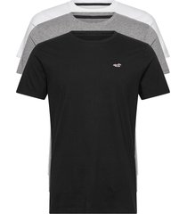 hco. guys knits t-shirts short-sleeved vit hollister