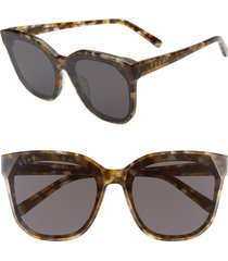 diff gia 62mm oversize square sunglasses in sea turtle tortoise/grey at nordstrom