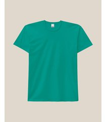 camiseta tradicional malha malwee turquesa - xgg