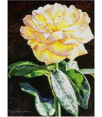 "david lloyd glover midnight rose canvas art - 20"" x 25"""