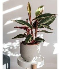 betonowa osłonka waza