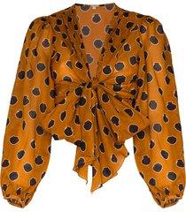 johanna ortiz pioneer tie-front cotton-voile blouse - brown