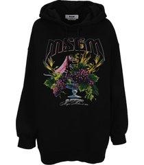 msgm summer print hoodie