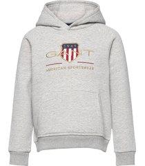 archive shield hoodie hoodie trui grijs gant
