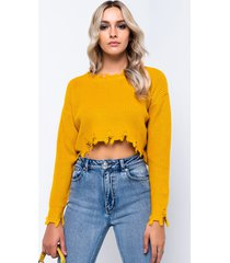 akira top it all long sleeve cropped sweater