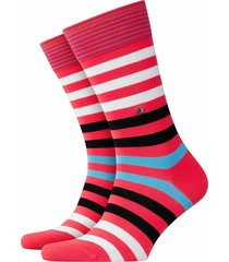burlington blackpool socks - | pink stripe | 21023-8542