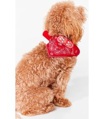 womens howl you doin' bandana dog collar - red