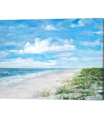day at the beach by julie derice canvas art
