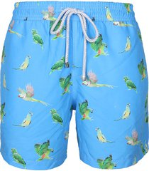 pantaloneta azul steam loro