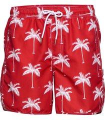 swim shorts sandhamn palms badshorts röd dedicated