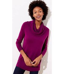 loft petite luxe knit cowl neck tunic sweater