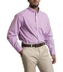 camisa libre de arrugas rosa rockford