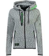vest geographical norway -