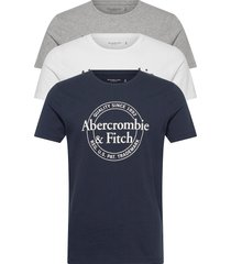 mens graphics t-shirts short-sleeved multi/mönstrad abercrombie & fitch