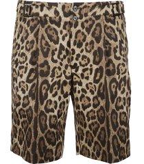 dolce & gabbana multicolor cotton shorts