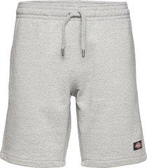 champlin shorts casual grå dickies