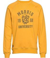 carleton sweatshirt sweat-shirt tröja gul morris
