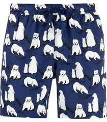 bluemint polar bear print swim shorts