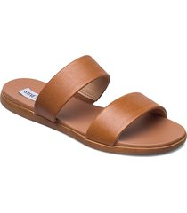 dual sandal shoes summer shoes flat sandals brun steve madden