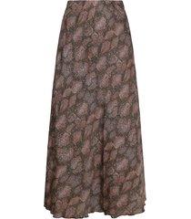 ambika rok bruin tenley