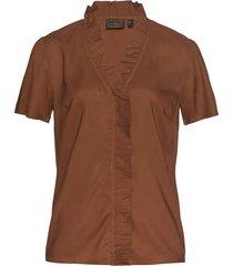 tunica (marrone) - bpc selection