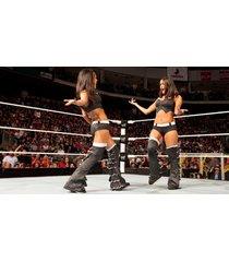 wwe  brie & nikki bella twins black in ring  2.5 x 4.5 fridge magnet