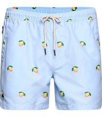 blue lemon swim shorts badshorts blå oas