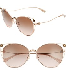 women's coach 58mm cat eye sunglasses -