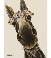 """hippie hound studios donkey snickersflower crown cream canvas art - 37"""" x 49"""""""