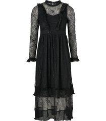 spetsklänning carolina lace dress