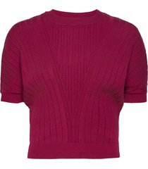 dafne t-shirts & tops knitted t-shirts/tops rood max&co.