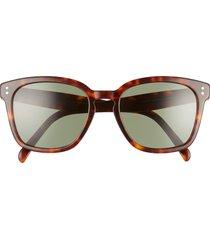 women's celine core 55mm oversize cateye sunglasses - dark havana/ green