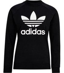 sweatshirt trefoil crewneck